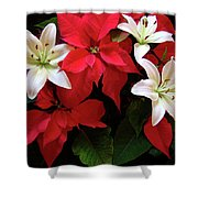 Poinsettia And Lilies Shower Curtain