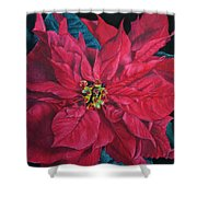 Poinsettia II Painting Shower Curtain