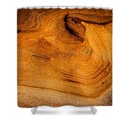 Point Lobos Abstract 10 Shower Curtain