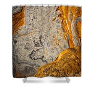 Point Lobos Abstract 12 Shower Curtain
