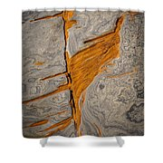 Point Lobos Abstract 13 Shower Curtain