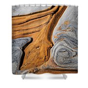 Point Lobos Abstract 5 Shower Curtain