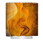 Point Lobos Abstract 6 Shower Curtain