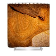 Point Lobos Abstract 9 Shower Curtain