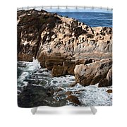 Point Lobos Coast 2 Shower Curtain