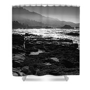 Point Lobos Shower Curtain