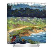 Point Lobos Trail Shower Curtain
