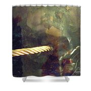 Point Of Insertion Shower Curtain
