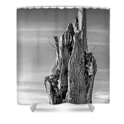 Pointing To The Heavens - Bw Shower Curtain