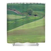 Points Leading Home Shower Curtain