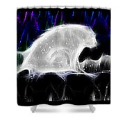 Polar And Snow Shower Curtain