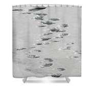 Polar Bear Footprints Shower Curtain