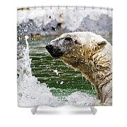 Polar Splash Shower Curtain