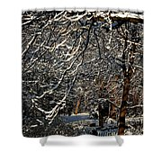 Polar Vortex Beauty Shower Curtain