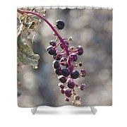 Polk Berries Shower Curtain