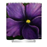 Polka Dot Purple African Violet Shower Curtain