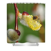 Pollen Feast Shower Curtain