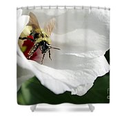 Pollenated Bumblebee Shower Curtain