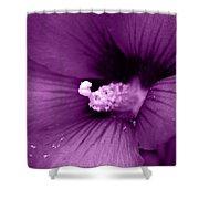Pollenize Me Shower Curtain