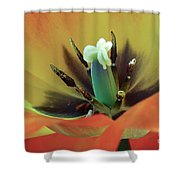 Pollinate Me Shower Curtain