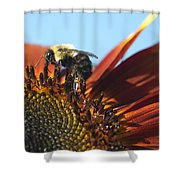 Pollinating Sunflower Seeds Shower Curtain