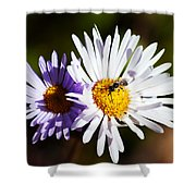 Pollination Shower Curtain