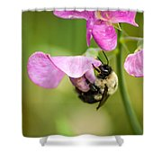 Pollination Nation Viii Shower Curtain