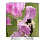 Pollination Nation X Shower Curtain