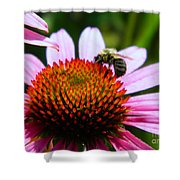 Pollinator Shower Curtain