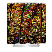 Pollock Revised Shower Curtain