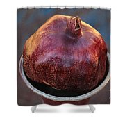 Pomegranate In A Vase Shower Curtain