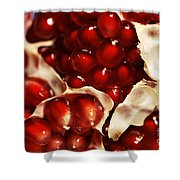 Pomegranate Seeds Shower Curtain