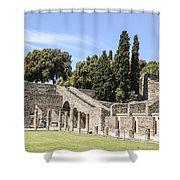 Pompeii 2 Shower Curtain