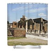 Pompeii 3 Shower Curtain