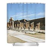 Pompeii 5 Shower Curtain