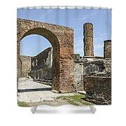 Pompeii 6 Shower Curtain