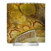 Pompeii Interior Shower Curtain