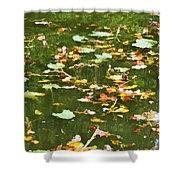 Pond 2 Shower Curtain