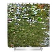 Pond 4 Shower Curtain