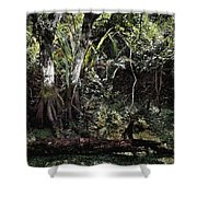 Pond Apple-1 Shower Curtain
