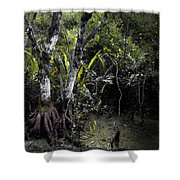 Pond Apple Shower Curtain