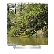Pond At Norfolk Botanical Garden 10 Shower Curtain