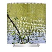 Pond At Norfolk Botanical Garden 8 Shower Curtain