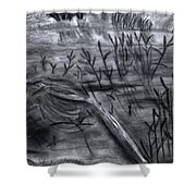 Pond Down The Road Shower Curtain