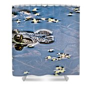 Pond Dweller Shower Curtain