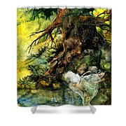Pond Fairy Shower Curtain