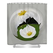 Pond Flower Orb Shower Curtain