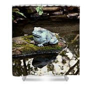 Pond Frog Statuette Shower Curtain