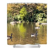 Pond Geese Shower Curtain