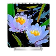 Pond Lily 17 Shower Curtain